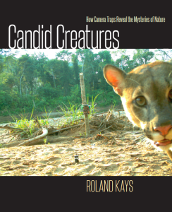 Canid Creatures cover