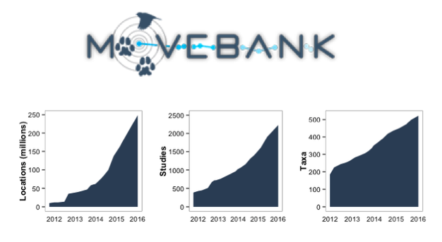The growth the use of Movebank by biologists and the amount of data it holds.